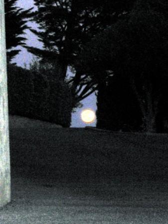 medium_lune.jpg